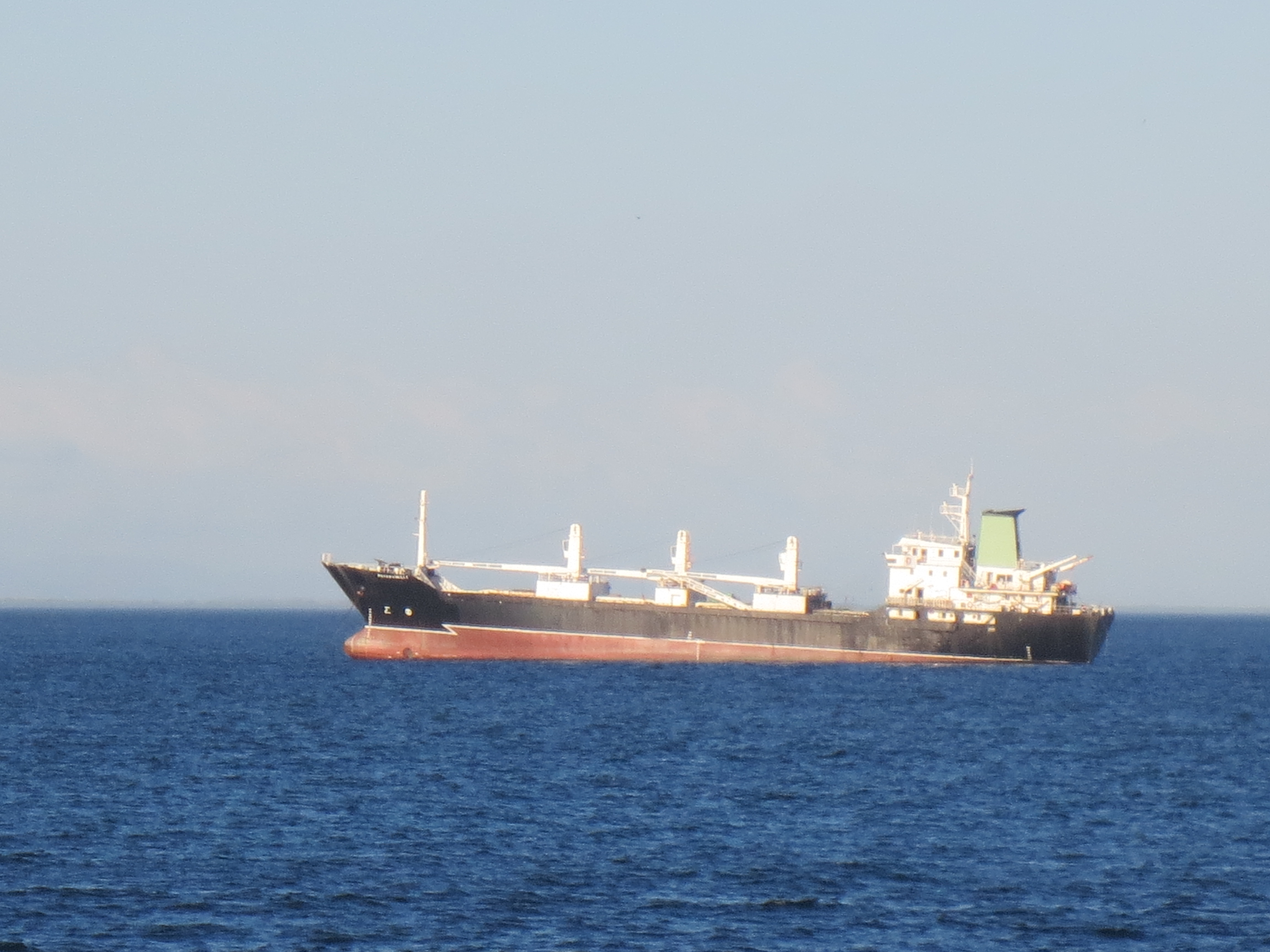 Bulk Carrier in Pacific